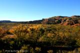 Canyon In Fall.jpg