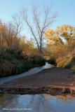 Prairie Dog Town River.jpg