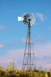 Buffalo Lake NWR Windmill, Umbarger, TX.