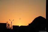 Sunset Bukhara