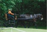HRBF agnes de mule