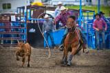 _DSC3081pb.jpg  Handhills Rodeo 2013