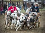 _DSC5902pb.jpg  The Pony Chucks
