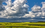 _SDP6491.jpg  Alberta storm coming in