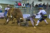 Bullridin' & Boot-Scootin' Bullarama  Lakedell Agricullural Society 5th. Annual 2013