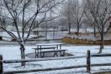 _DSF5134pb.jpg  Winter to Summer no Spring