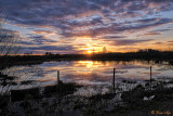 _DSF5296gf.jpg  Near By the Lake Park in Wetaskiwin