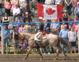 _GWW7734.jpg  This is Canada, our Alberta, Land of the Free...