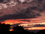 11-6-2013 Sunset 2.jpg