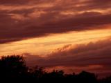 11-6-2013 Sunset 11.jpg