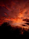 12-31-2013  Sunset 2.jpg