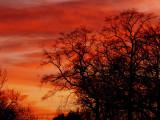 2-8-2014 Fiery Sunset 3.jpg