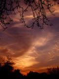 2-20-2014 Sunset 1.jpg