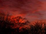 2-20-2014 Sunset 3.jpg