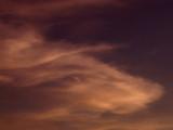 3-17-2014 Longhorn Steer in the Sky Giving Me the Eye.jpg