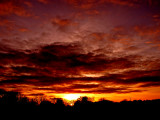 1-24-2014 Sunset 1.jpg