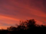 1-4-2015 Sunset2.jpg