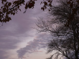 1-17-2015 Winter Sky 3.jpg