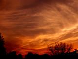 Cirrus  Sunset  2.jpg