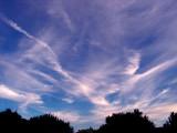 8-24-2015 Cirrus Clouds