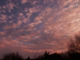 1-11-2016 Sunset 2