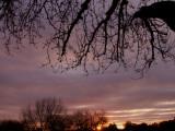2-5-2016 Sunset 6