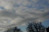 2-22-2016 Winter Sky 2