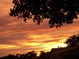 7-28-2016 Golden Sunset 10