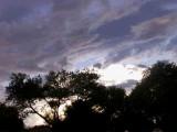 9-4-2016 Sunset After the Rain 1.jpg