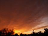 1-25-2017 Sunset