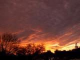1-25-2017 Sunset 5