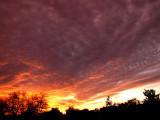 1-25-2017 Sunset 8