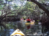 Shan-T Native Kayak Tour