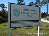Amberjack Park