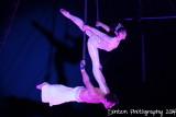 Circus Sarasota 2014 - Wonderstruck