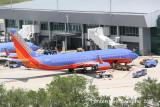 Boeing 737-800 (N8325D)