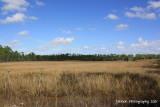 Charlotte Flatwoods Environmental Park