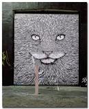 _DSC4665 graffiti- 1.jpg