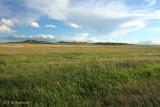 Bowman, ND prairies