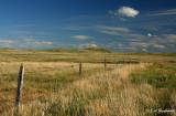 Bowman County prairies