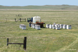 Bee-hives on the prairie