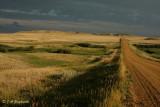 Slope County Prairie