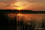 sunset at Red Slough