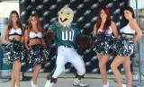 Eagles Training Camp 2013