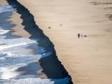 Baja California Sur 2013