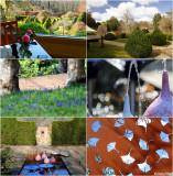 Cloudehill Gardens - Dandenong Ranges