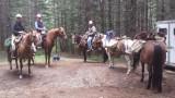 Carlton Creek Trail #22