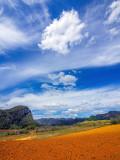 P3291799a-Cloud.jpg