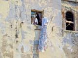 P3210712-Window.jpg