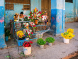 P4012834-Flower-Stall.jpg